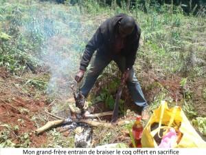 preparation coq sacrifié