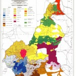 Cameroun : maladies difficiles à soigner (Partie 1: Tribalisme)