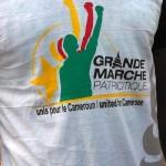 Marche de soutien à l'armée camerounaise : j'y étais