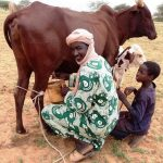 Portrait d'entrepreneur en Afrique: Entretien avec Mouhamed SIDIBE du Mali