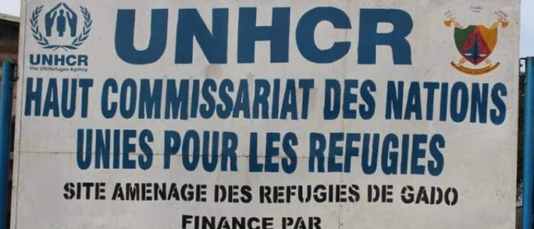 Article : Ma rencontre avec des réfugiés centrafricains au Cameroun